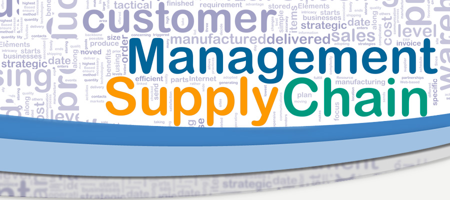 supply chain management solutions pdf